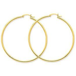 Polished Yellow Gold 2mm Round Hoop Earrings